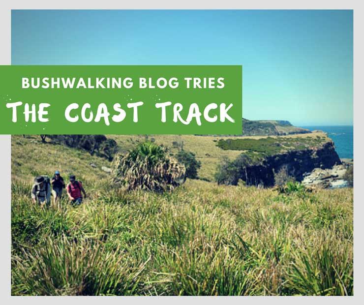 the coast track royal national park