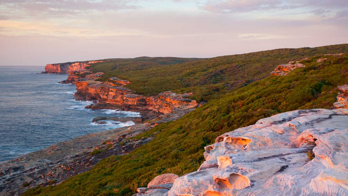 Royal National Park Coastal Walk at dawn. The sandstone cliffs just east of Bundeena are tinged red with sunrise.