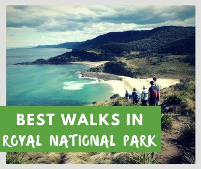 royal national park sydney australia